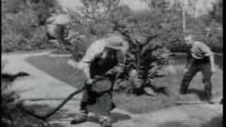 Der begossene Gärtner