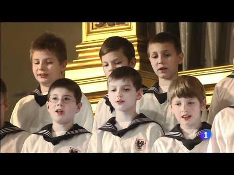 Concierto de Año Nuevo 2012  Niños Cantores de Viena.