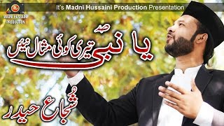 New Naat 2018 Rabi-ul-Awal Special - Shujjah Haider - Madni Hussaini Production