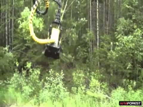 AFM 220 wood energy head - Logman harvester