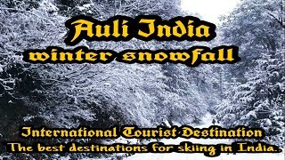 Trending snowfall in Auli | Chamoli district | Uttarakhand | India.