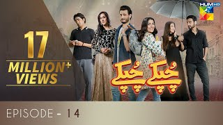 Chupke Chupke Episode 14 | Digitally Presented by Mezan & Powered by Master Paints | HUM TV | Drama