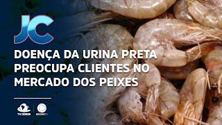 Doença da urina preta preocupa clientes no mercado dos peixes
