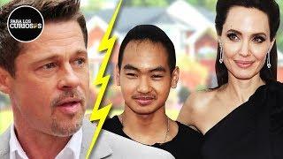 ¿Por Qué Angelina Jolie Le Deja Toda Su Fortuna A Maddox, Su Hijo Antes De Brad Pitt?