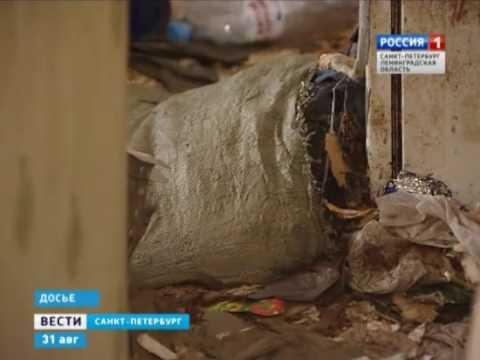 После вмешательства Выборгского городского прокурора «скандальную квартиру» приведут в порядок