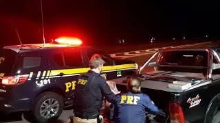 PRF prende, em Pelotas, três caçadores armados que abateram ilegalmente dezenas de aves silvestres