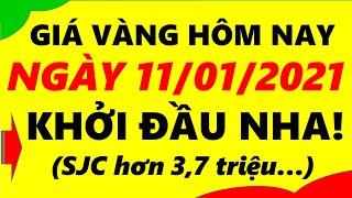 Giá Vàng Hôm Nay Ngày 11/01/2021 - Giá Vàng 9999 Khởi Đầu Nha!