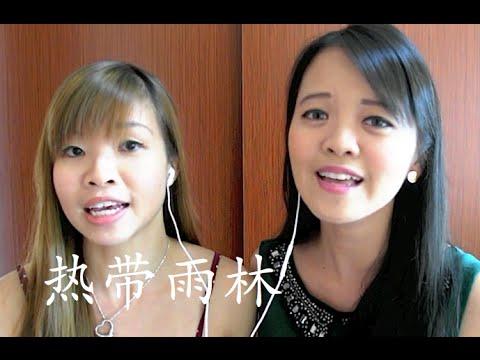 热带雨林 Re Dai Yu Lin - S.H.E (instrumental cover) by Shiiirleygoh & Melody