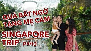Bí mật bất ngờ cho mẹ Cam | Mua gì, chơi gì ở hai malls LỚN NHẤT Singapore ? Vlog 103