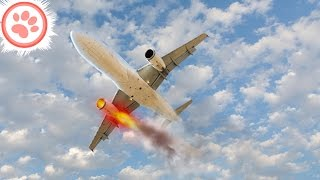 10 Saddest Last Words From Pilots About to Crash