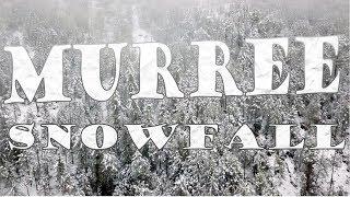 Murree Snowfall January 2019 l Drone in Live Snowfall l Murree in Winters