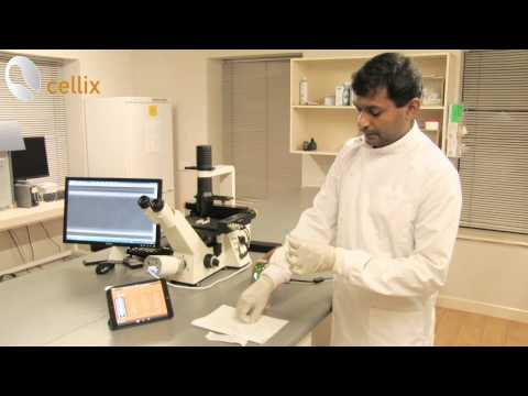Cell-Cell Adhesion Assays with ExiGo Pump