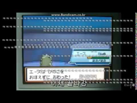 레벨1 포켓몬 6마리로 레드공략(농락)