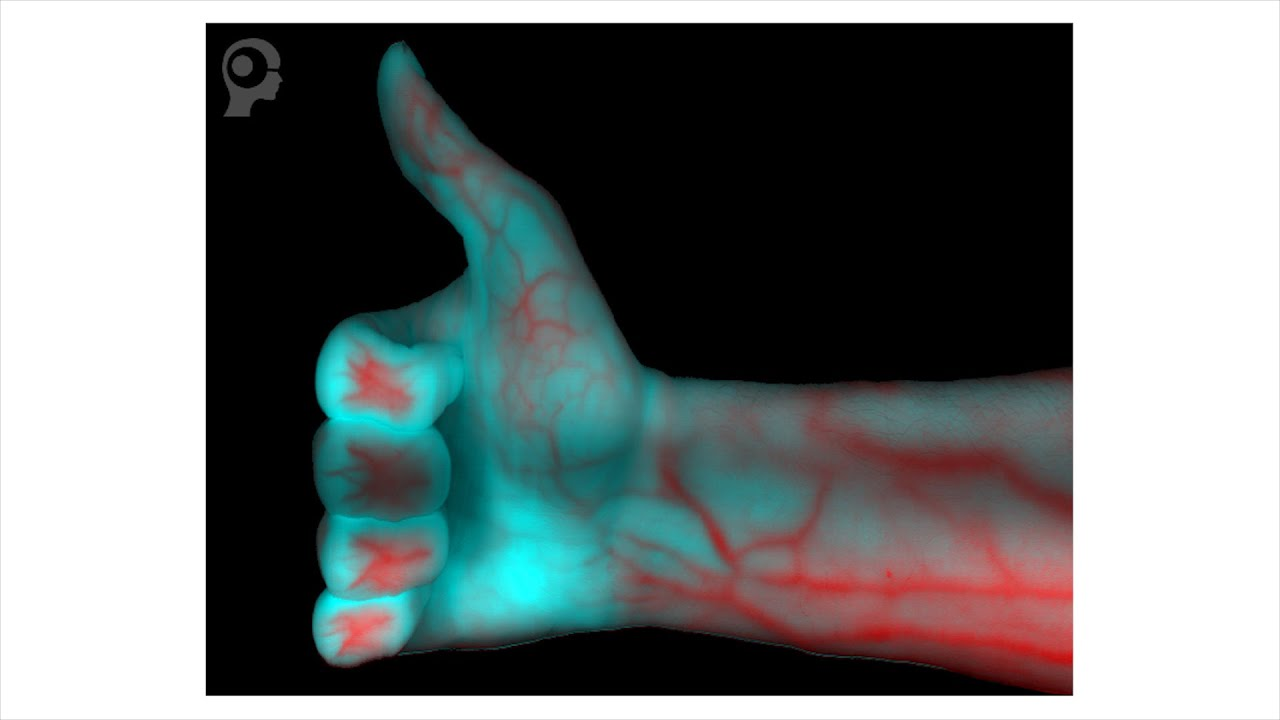 Hyperspectral imaging for industrial applications
