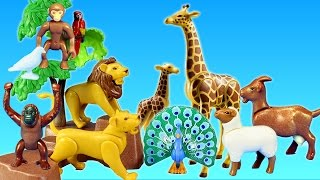 Playmobil City Life Toy Wild Animals Large Zoo Building Sets Videos