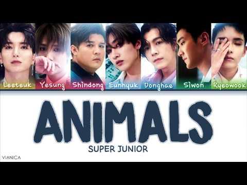 SUPER JUNIOR (슈퍼주니어) – 'ANIMALS' (Color Coded Han/Rom/Eng Lyrics/가사) | by VIANICA