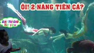 NÀNG TIÊN CÁ CÓ THẬT! The mermaid is real - Giai tri cho Be yeu