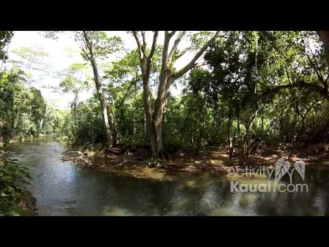 Wailua Kayak Adventure