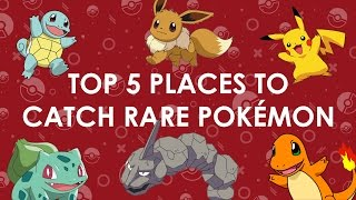 The top 5 places to find rare Pokémon