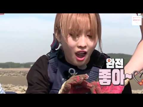 161114 TWICE Momo - Flower Crew Cut