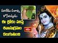 మారేడు దళాన్ని కోసేటప్పుడు ఈ శ్లోకం పఠిస్తే శివానుగ్రహం కలుగుతుంది   Mantrabalam   Bhakthi TV