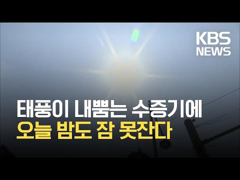 대서(大暑), 전국 달군 '불볕 더위'…당분간 폭염·열대야 계속 / KBS 2021.07.22.