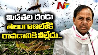 CM KCR alerts officials over Locust attack, holds review m..