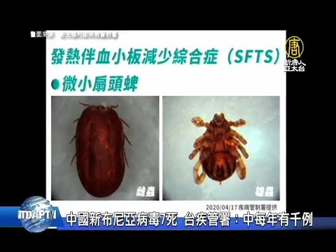 中國新布尼亞病毒7死 台疾管署:中每年有千例