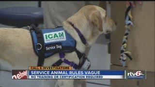 Call 6 investigation finds federal law regarding service animals vague