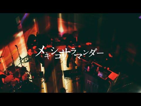 【Live MV】メキシコサラマンダー(short ver.) / ナナヲアカリ