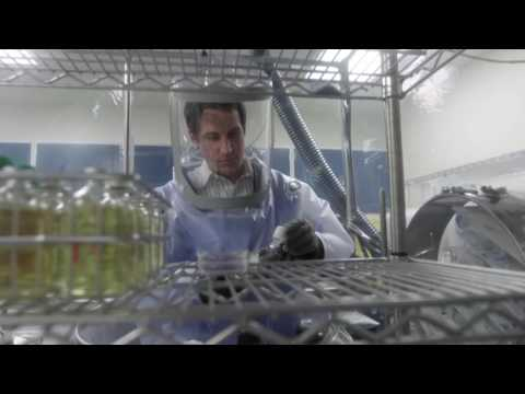B-roll - Influenza vaccine production (August 2016)