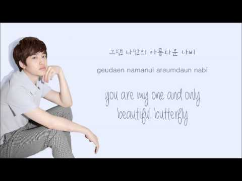 EXO-K - Don't Go (나비소녀) (Color Coded Hangul/Rom/Eng Lyrics)