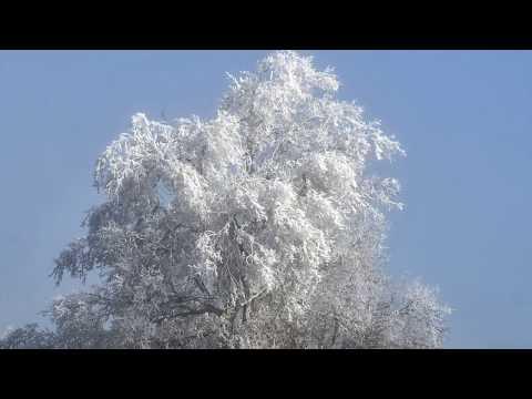 Temps de gebre hivern segarra