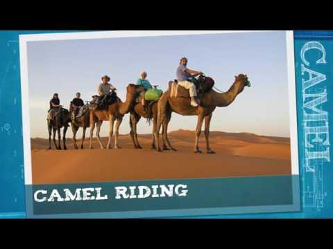 Dubai 5 nights 6 days itinerary with desert trip
