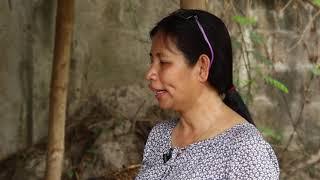 Demo sa Paggawa ng Mushroom Fruiting Bags at Paglalagay ng Binhi ng Kabute