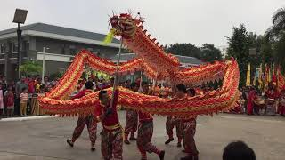 Lion and dragon dance 2018 Cambodia