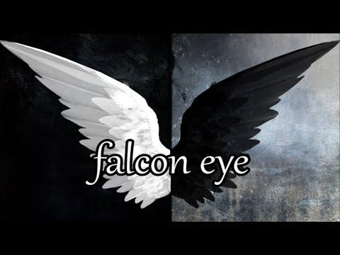 Falcon Eye - Off Bloom | Lyrics