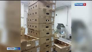 Специалисты управления Россельхознадзора по Омской области уничтожили несколько тонн нелегального мяса