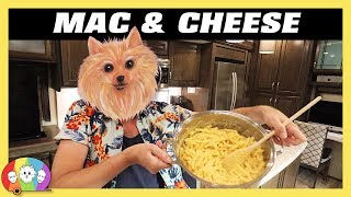 America's Test Kitchen Best Stovetop Mac & Cheese Recipe - Full Time Living in our Grand Design RV!
