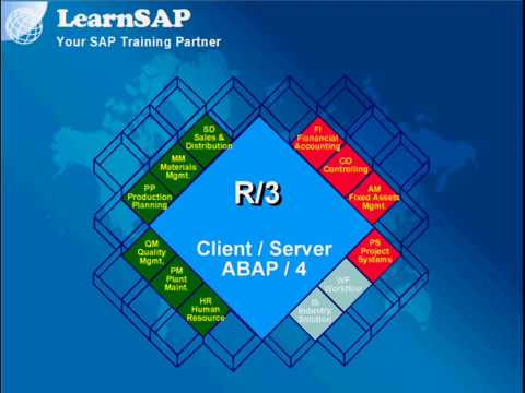SAP Overview -  www.LearnSAP.com