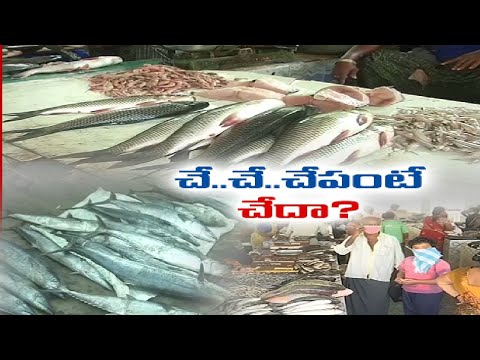 AP grabs first position in fish production in India