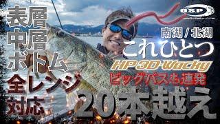 【HP3Dワッキー】20本超え!表層・中層・ボトム全レンジ対応:琵琶湖 南湖/北湖これひとつ【三宅貴浩】