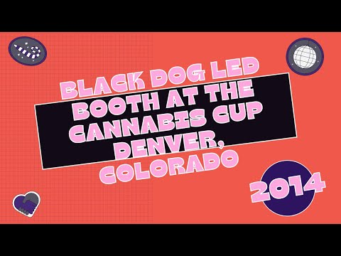 Black Dog LED Booth at the Cannabis Cup Denver 2014