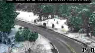 Arizona Bigfoot Caught On Traffic Camera (commentary)