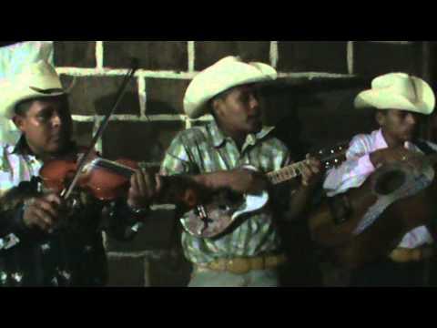 EL GUAJOLOTE. LOS PASEADORES DE LA SIERRA EN STA. MA. APIPILHUASCO VER.mpg