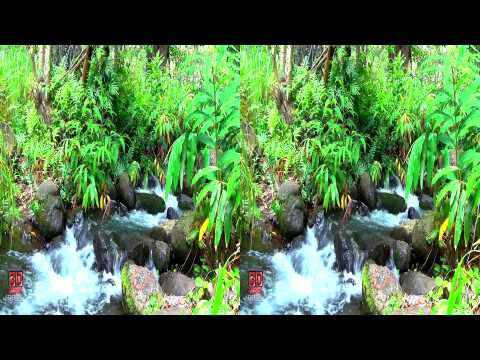 3D Video Hawaii Nature Scene - 3D Video Everyday N°49