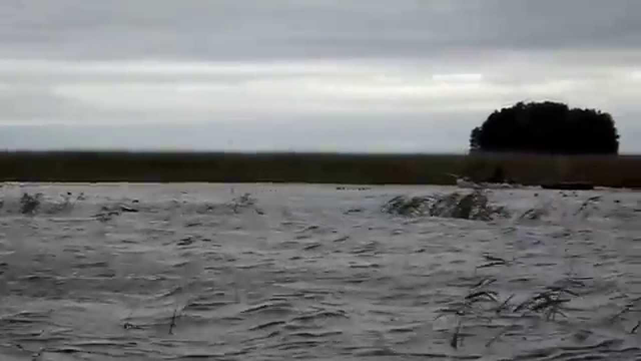 Рыбалка на озере южное ялуторовский район