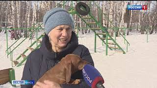 «Вести Омск», итоги дня от 18 марта 2021 года