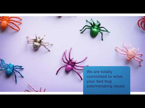 OCP Bed Bug Exterminator in San Jose, CA | 669-271-7311