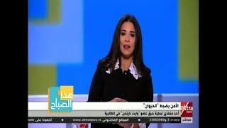 هذا الصباح | شاهد .. تعليق أسماء مصطفى على حرق طالب بالشماريخ ...
